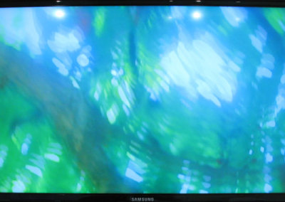 Summer Lounge Chair Looking Up (Joanne Lyons), 2014: Video . NFS