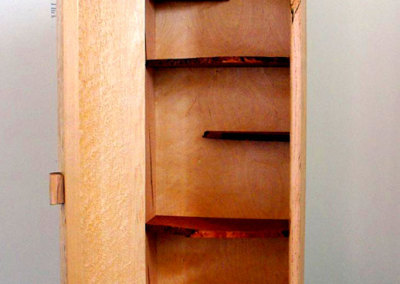 Wall Cabinet 2012