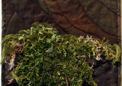 Forest Moss by Donna Stockdale