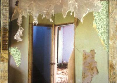 Green Room 2: Hanging Plastic - Wendy Weseen