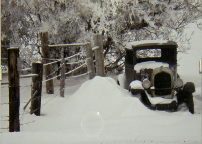 John Luther, Snowy Fence, Snowy Tree, Snowy Car: Photography. 2013, $80.
