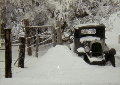 John Luther, Snowy Fence, Snowy Tree, Snowy Car: Photography. 2013, $80.