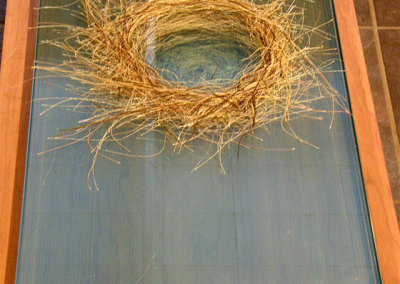 Those Who Live in Glass Nests #2, 2012: Glass and thread. NFS