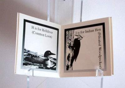 A Birdwatcher's Colouring Book Alphabet, 2005 - Cathryn Miller