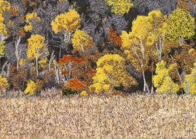 Blackstrap Autumn Hillside
