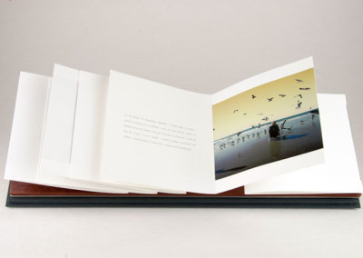 Rose Desarroi (Jacques Fournier), 2010: Artists' Books
