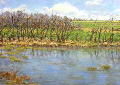 Studio Pond (Karen Holden), 2013: Oil on canvas. Collection of Ryan Germaine