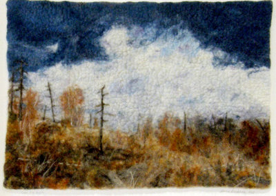Donna Stockdale, Over the Burn: Wool; wet, needle, & hand felted. 2013, NFS.