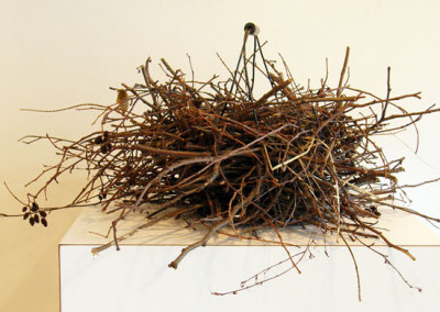 Mobile Home - Monique Martin and Trint Thomas, 2012: Chicken wire basket (found object), twigs, grass, feathers. $200