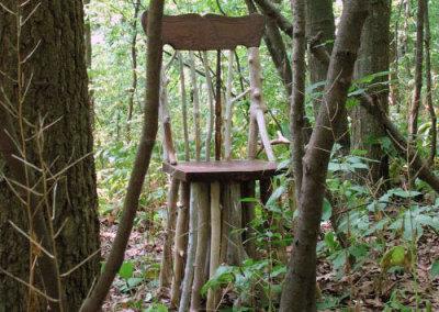 Walking Chair, 2007 - Ryan Legassicke