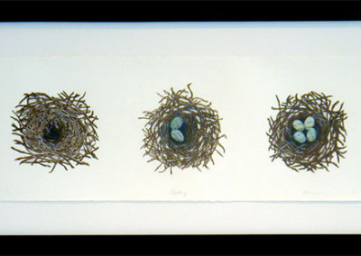 Nesting, 2011: Ink, pencil crayon, and bank statement on paper. $675