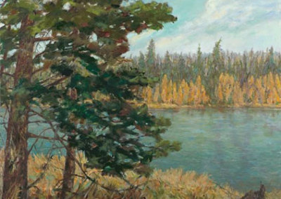 Big Spruce (Karen Holden), 2013: Oil on canvas. $2,800