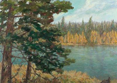 Big Spruce (Karen Holden), 2013: Oil on canvas. $2,800
