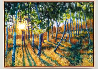 Sunset Patterns - Jane A. Evans