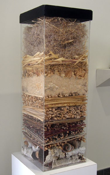 Museum Piece (Marigold Cribb), 1989: Plexiglass, found natural materials. NFS