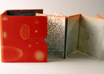 Fractured Terrain (Karen Kunc), 2011: Artists' Books. PRIZE (Best Overall Entry, Bookbinding Workshop)