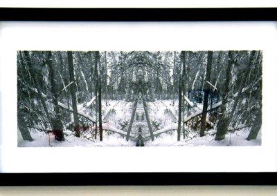 Gateway: Rowan Pantel, 2011 - Giclée; Digital print on paper. $150