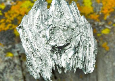 Lichen Post Knot