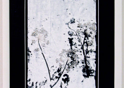 Queen Anne's Lace: Leila J. Olfert, 2011 - Printing ink, cotton embroidery floss; resist painting, embroidery. $225