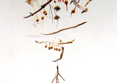 Emerging (detail): Juliane Deubner, 2011 - Branches, dried plants, seed pods, pine cones, sculpty, fishing line. $180