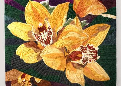 Cymbidium Orchids - Debora Barlow