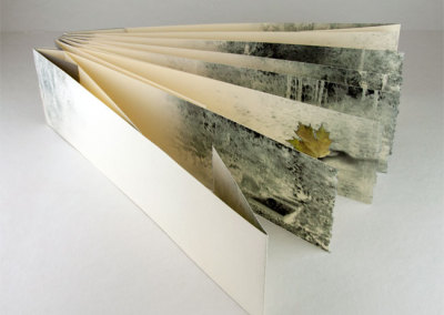 Poem for October (Joyce Ryckman), 2013: Artists' Books