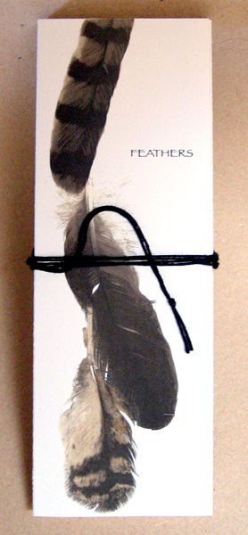 Feathers (Cathryn Miller), 2011: Limited edition artist's book: small accordion book and real feather in cardstock support inside wrap cover with cord closure. $30