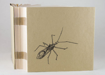 ABC of Bugs and Plants in a Northern Garden (Claire Van Vliet), 2012: Artists' Books. PRIZE (Colophon Book Arts Supply)