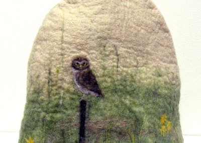 Dianne Murphy, Burrowing Owl: Wool (Corriedale, Merino, silk); wet & dry felting. 2013, $90.