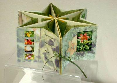 Saskatchewan Flowers, 2005 - Kathy Hamre