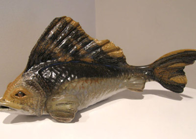 Greater Spotter Dog Fish, 1979 - Robert Billyard