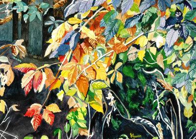 Autumn Leaves Rainbow