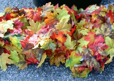 It's Leaf Scuffin' Time