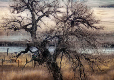 Gothic Tree