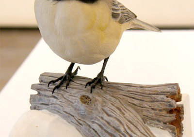 Chickadee by Harvey Welch, Collection of Colleen and Allan Bailey