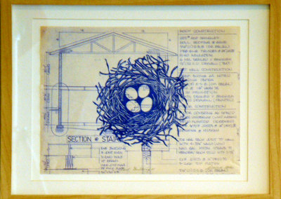 Nest Building II, 2012: Ink on blueprint. $300