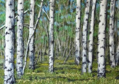 Poplars Standing Tall