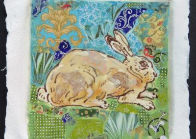 Still Rabbit