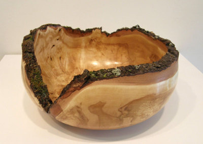 Bark and Moss Edge Bowl by Dale Lowe