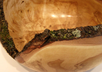 Bark and Moss Edge Bowl (detail) by Dale Lowe