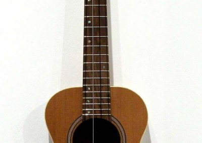 "David Freeman ""Ukelele -  White Tui"" 2014; $1,200"