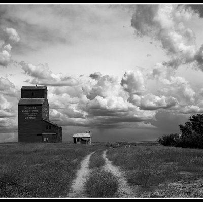 After the Rain (Robert S. Pohl), 2010: Analog photography.  $695.