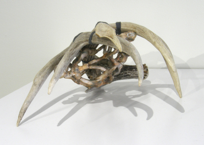 Undergrowth: Porcelain, wire, antlers, cord, varnish; hand built, fired to cone 6 Ox, smoked, assembled. $650