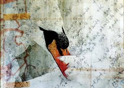 "Judy Wood ""Graffiti Swan"" 2014. Inkjet on canvas; Digital photography, photoshop. $140"