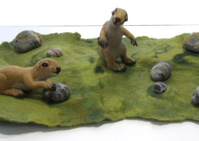 Perennial Prairie Partisans (Heike Fink), 2015: 100 % wool; needle felted, wet felted. $650