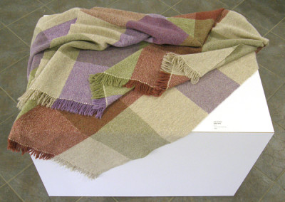 Prairie Spring (Judy Haraldson), 2014: Wool; hand weaving. $200