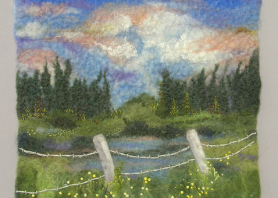Mosquito Country (Judy Weiss), 2014: Wool; wet felting, needle fetling, hand stitching. NFS