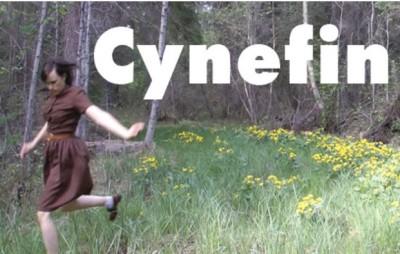 CYNEFIN logo