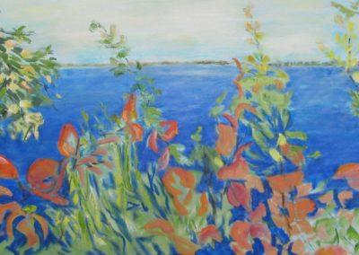 Lake Screen
