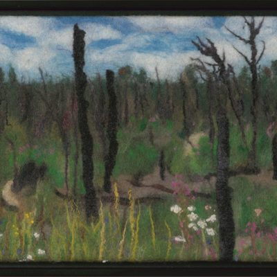 """""""A Year Later"""" Donna Stockdale. 2016. Wool and silk fibre; wet felting, needle felting. $750."""